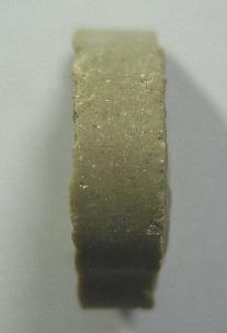 พระประจำวันเกิด พ.ศ. 2519 เนื้อเกสร หลวงปู่โต๊ะ วัดประดู่ฉิมพลี