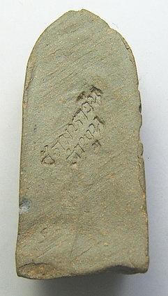 พระรอดวัดมหาวัน จ.ลำพูน ปี 2518 มหาพุทธาภิเศกอินเดีย พิมพ์มารวิชัย(2):00774