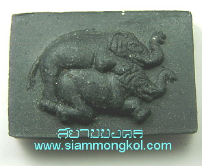 ช้างผสมโขลง(อิ่นช้าง) พระครูบาเจ้าไต้อ๋อง วัดดอยกู่ไก่แก้ว อ.จุน จ.พะเยา