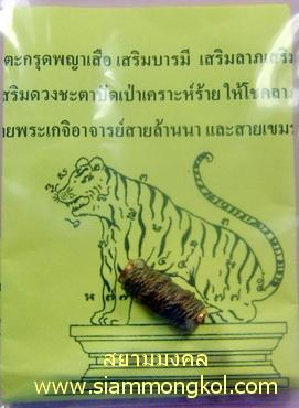 ตะกรุดพญาเสือ เสริมบารมี เสริมลาภเสริมดวง ปลุกเสกโดยพระเกจิอาจารย์สายล้านนา และสายเขมร ๗ วาระ ๗ พิธี
